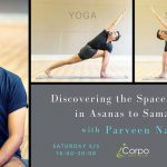 Discovering the Space element (Akasha) with Guru Sri Parveen Nair!  5-6 of May 2018